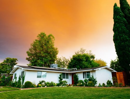 Saving Energy through Landscaping [How To]